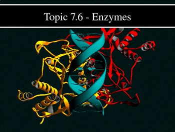 IB Biology (2009) - Topic 7.6 - Enzymes HL PPT