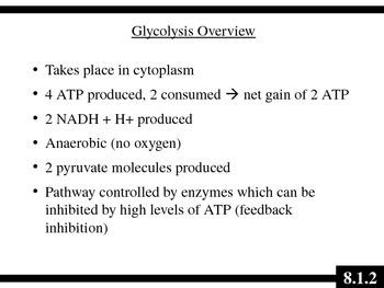 IB Biology (2009) - Topic 8.1 - Cellular Respiration HL PPT