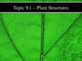 IB Biology (2009) - Topic 9.1 - Plant Structures PPT