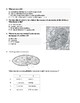 IB Biology Unit 1: Cell Biology Review Test