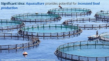 IB ESS Topic 4.3 Aquatic Food Production Systems
