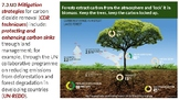 IB ESS Topic 7.3 Climate Change Mitigation and Adaptation