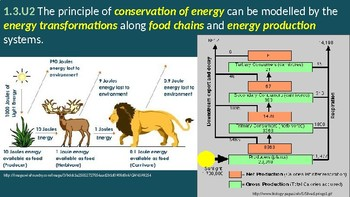 IB ESS Topic 1.3 Energy and equilibria