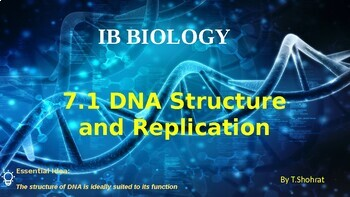 IB HL Biology 7.1: DNA Structure and Replication
