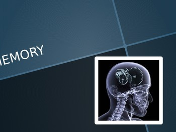 IB Psychology Cognitive Perspective Memory Power Point Interactive