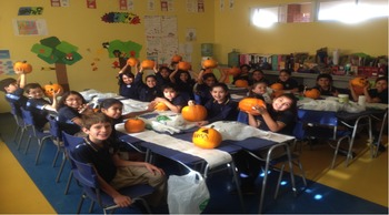 IB Pumpkin Surprise!