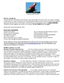 IB Spanish, AP Spanish, Spanish 4 Endangered Species Pamphlet rubric