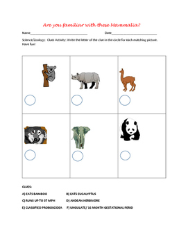 IDENTIFY THE MAMMALS: FUN ACTIVITY
