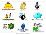 IDIOM FLASHCARDS autism special education speech therapy cards pdf