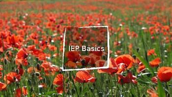 IEP 101 Lesson