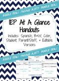 IEP At A Glance Editable Bundle (Black&White,Color,Student