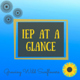 IEP At A Glance for DHH Students
