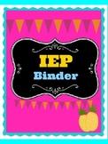 IEP Pineapple  Binder cover