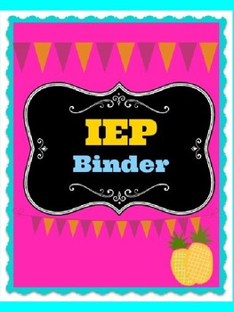 IEP Pineapple  Binder cover