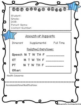 IEP at a Glance Sheet