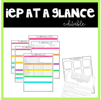 Iep At A Glance Template Teaching Resources | Teachers Pay Teachers