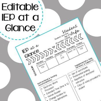 IEP at a Glance Freebie - Editable