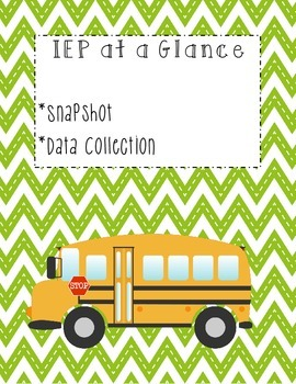 IEP at a Glance-- Snapshot, Data Collection