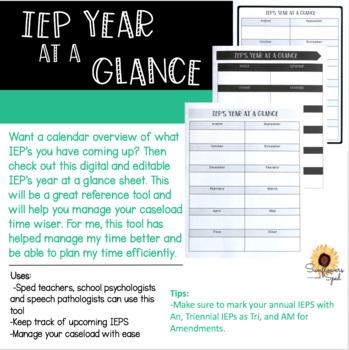 IEP Year at a Glance Sheet