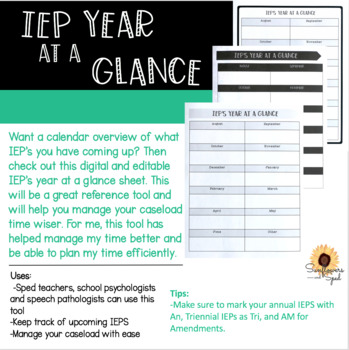 IEP Year at a Glance Sheet