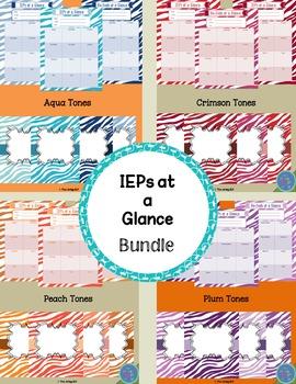 IEPs & Re-Evals At-A-Glance (Bundle)