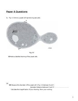 IGCSE CLASSIFIED QUESTIONS PAPER 6