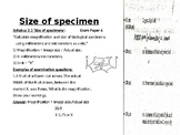 IGCSE Year 10.4  Size of specimen