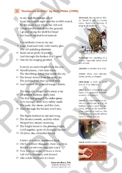 IGCSE Poetry 2019 - 2021: Vol  2 Part 2 Teaching + Revision + EXAM PREP  Bundle