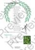 "IGCSE Poetry: ""Coming"" - Philip Larkin - (Poem, Worksheets, Exam Prep + Guide)"