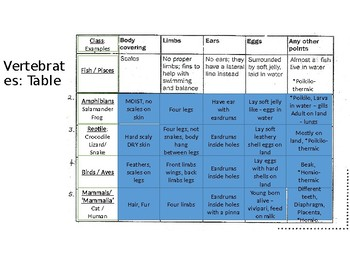 IGCSE Year 10.1 Classification