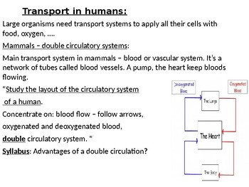 IGCSE Year 10.11 Transportation in Humans