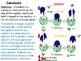 IGCSE Year 10.6 Enzymes