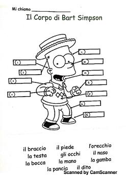 IL Corpo le parti del corpo body parts in italian