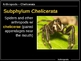 ILLUSTRATED Arthropods!