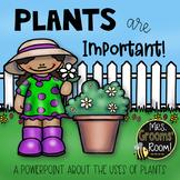 IMPORTANT PLANTS