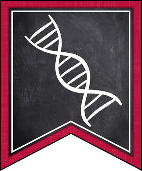 INDIANA SCIENCE STANDARDS BANNERS, 5th GRADE, RED & CHALKBOARD