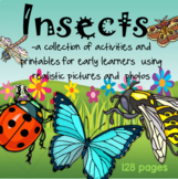 INSECTS Activities and Printables with Photos and Realistic Graphics