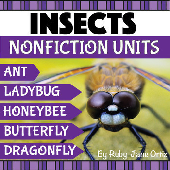 Bugs and Insects Activities Bundle