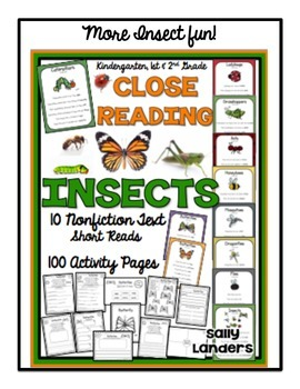 INSECTS FREEBIE!  Bugs, bugs, bugs!
