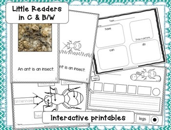 INSECTS! Non-fiction Beginning Readers for Guided Reading