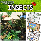 INSECTS Playful Learning Invitations