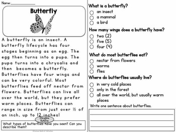 INSECTS Reading comprehension for special education