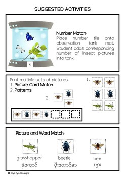 INSECTS UNIT- IN ENGLISH AND MYANMAR (BURMESE)