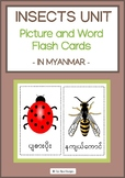 INSECTS UNIT- PICTURE AND WORD FLASH CARDS IN MYANMAR