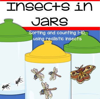 INSECTS Sorting and Counting - realistic insects