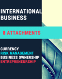 INTERNATIONAL BUSINESS BUNDLE – Currency, Risk, Bus Owners