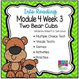 HMH Into Reading Module 4 Week 3 Third Grade - Two Bear Cubs Supplement