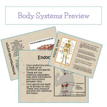 Introduction to Body Systems - PPT/Google Slides - Fully Editable!