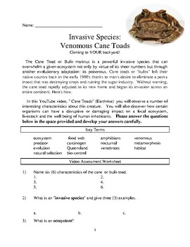 INVASIVE SPECIES: Poisonous Cane Toads! Comprehensive lesson packet