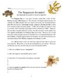 INVASIVE SPECIES: SARGASSUM SEAWEED and the BERMUDA TRIANGLE!